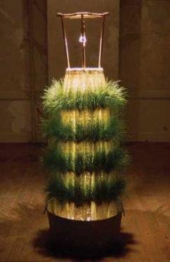 Grass Skirt IV